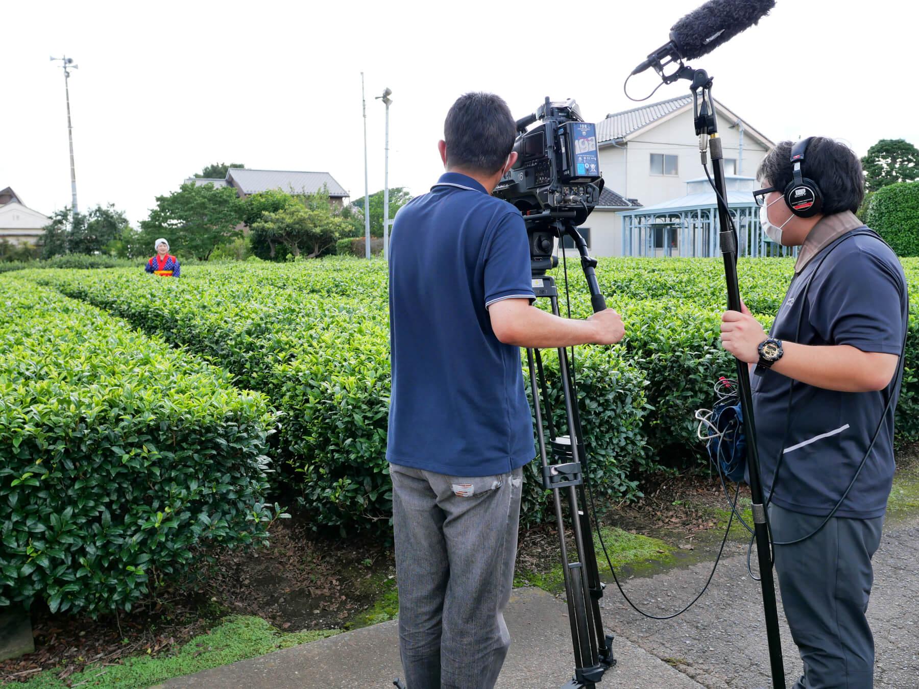 テレ玉 NEWS 545 茶畑セラピー 2021年8月3日放送